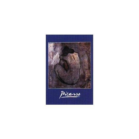 Pablo Picasso: Nu de Dos