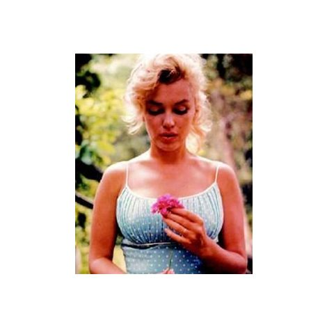 Marilyn Monroe, Garden Poster