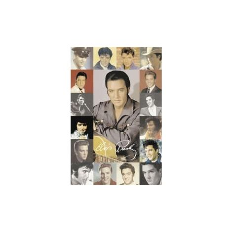 Faces of Elvis Poster
