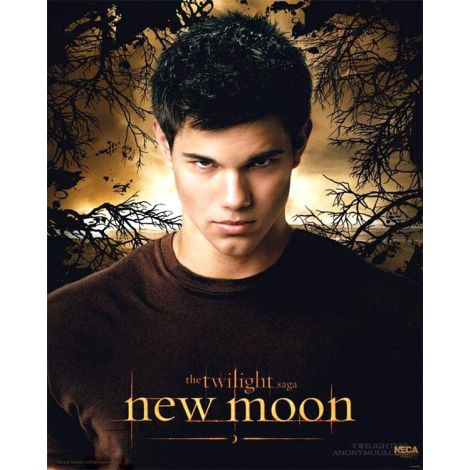 New moon Jacob poster