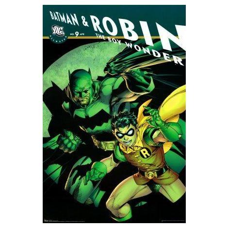 Dc Comics Batman & Robin Poster