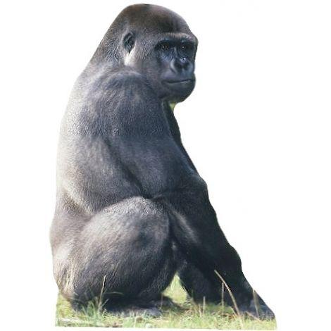 Gorilla Cutout #220