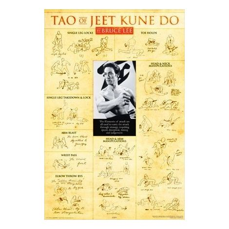 Bruce Lee Tao of Jeet Kune Do Poster