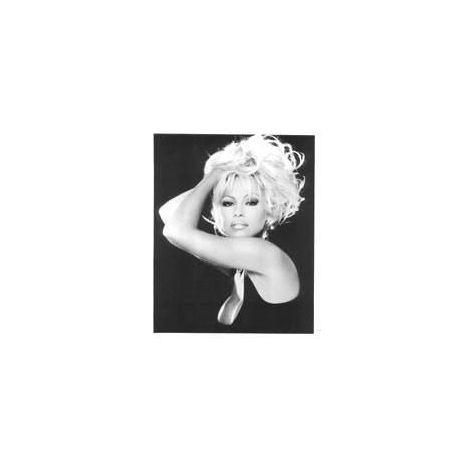 Pamela Anderson Still