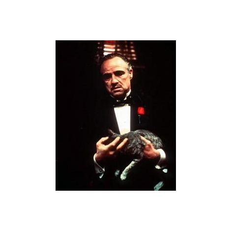 "Marlon Brando from ""The Godfather"""