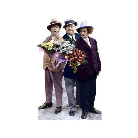 The Three Stooges, Flowers