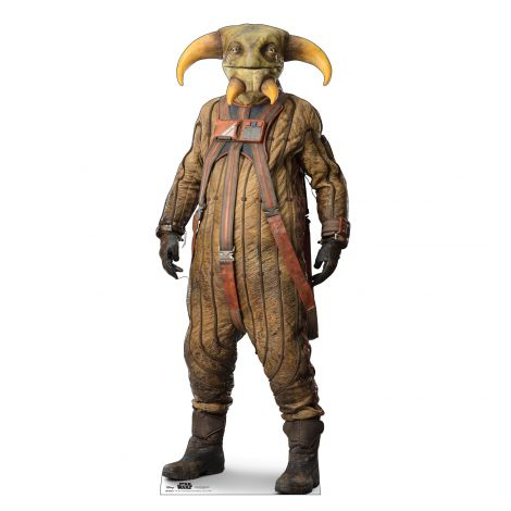 BOOLIO Cardboard Cutout from Star Wars IX *2963
