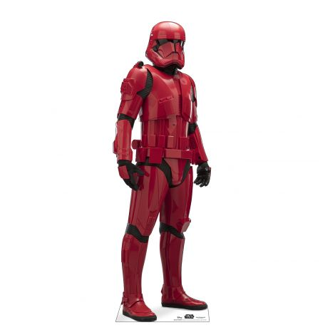 Sith Trooper Cutout from Star Wars IX *2984