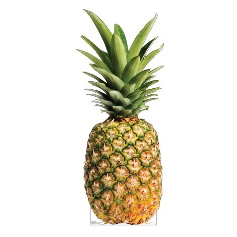 Pineapple Cardboard Cutout *3002