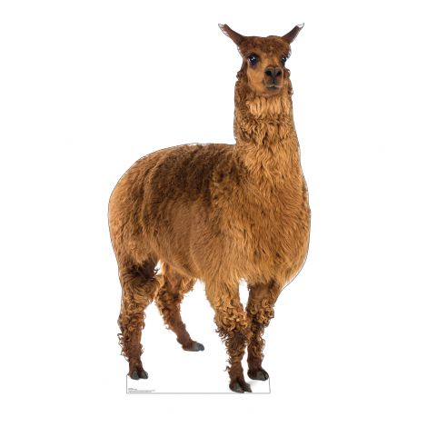 Llama Cardboard Cutout *3009