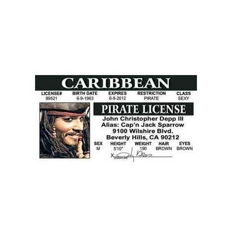 Johnny Depp Driver License