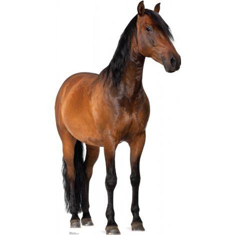 Horse Lifesize cutout #1491