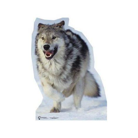 Wolf Photo Cutout