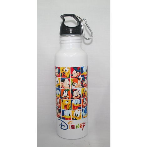 Disney characters aluminum water bottle