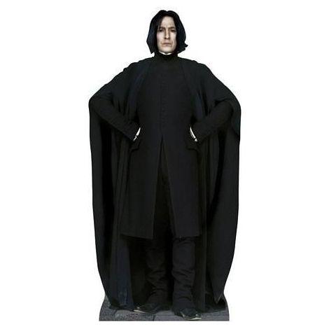 Professor Snape cutout #885