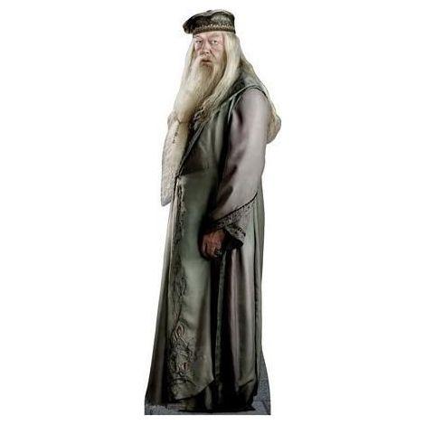 Professor Dumbledore #886
