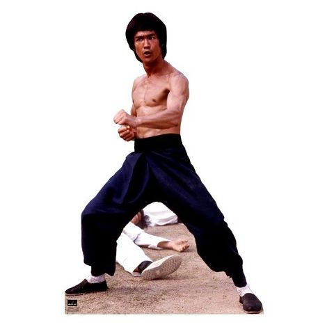 Bruce Lee #1043 standup