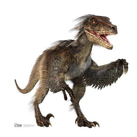 Dinosaur Velociraptor Cutout #1038